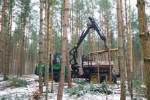 Der Forwarder ist im Revier Granzow zum letzen Mal im Einsatz. Foto: N. Künkler, Nationalparkamt Müritz