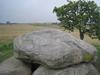 interner Link (neues Fenster): Bild vergrößern: Abb. 2: Radkreuz auf dem Deckstein des Megalithgrabes von Mechelsdorf (Foto: V. Häußler, Rerik)