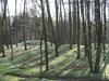 interner Link (neues Fenster): Bild vergrößern: Hügelgräber bei Lübstorf, Landkreis Nordwestmecklenburg