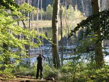 Die Teilnehmer können Wildnis erfahren und durch Perspektivwechsel einen andern Blick auf sich und die Natur bekommen © Ulrich Meßner, Nationalparkamt Müritz