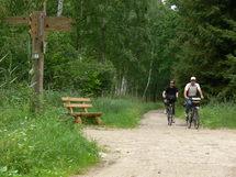 Radfahrer im Nationalpark