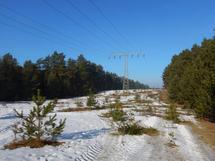 Stromtrasse im Müritz-Nationalpark, Foto: J. Dittmer, Nationalparkamt Müritz